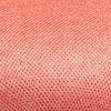 Màu Đỏ Son - Coral